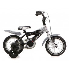 Bike 2 Fly 12 inch Zilver